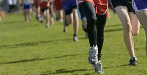 lower limb sports injuries